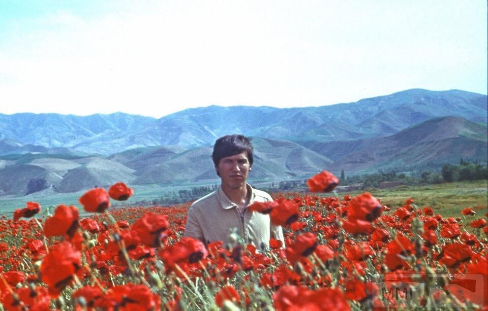 54995 - Афганская война - общая тема