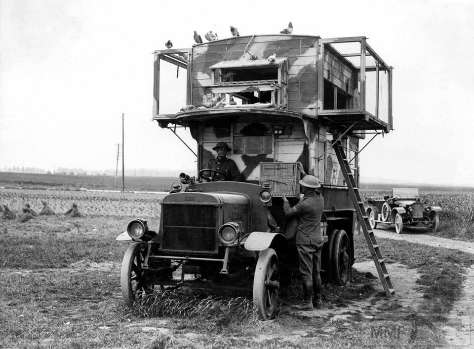 55702 - Военное фото. Западный фронт. 1914-1918г.г.