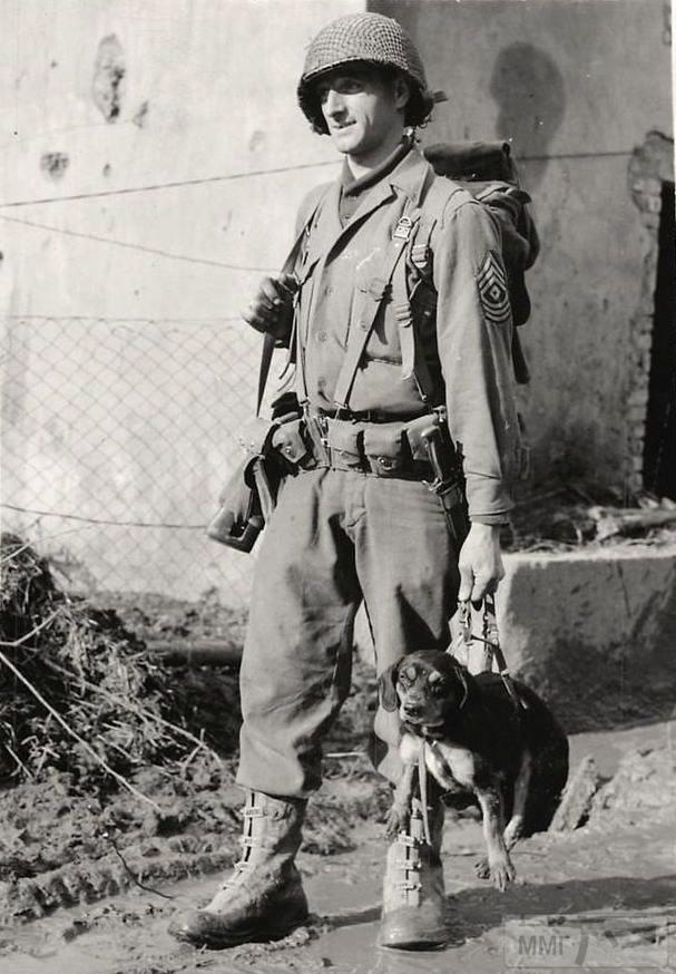 57195 - Военное фото 1939-1945 г.г. Западный фронт и Африка.