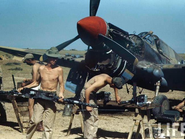 57446 - Военное фото 1939-1945 г.г. Западный фронт и Африка.