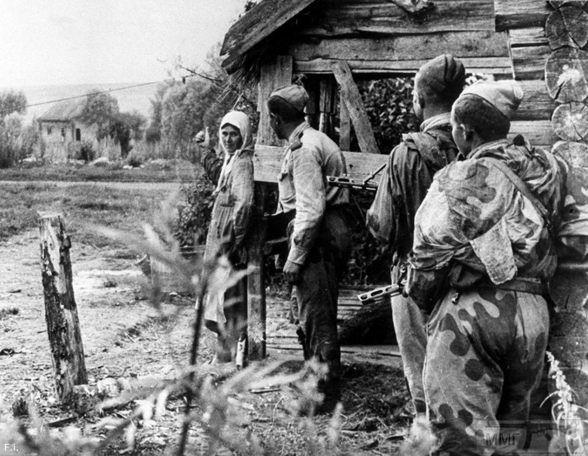 58093 - Военное фото 1941-1945 г.г. Восточный фронт.