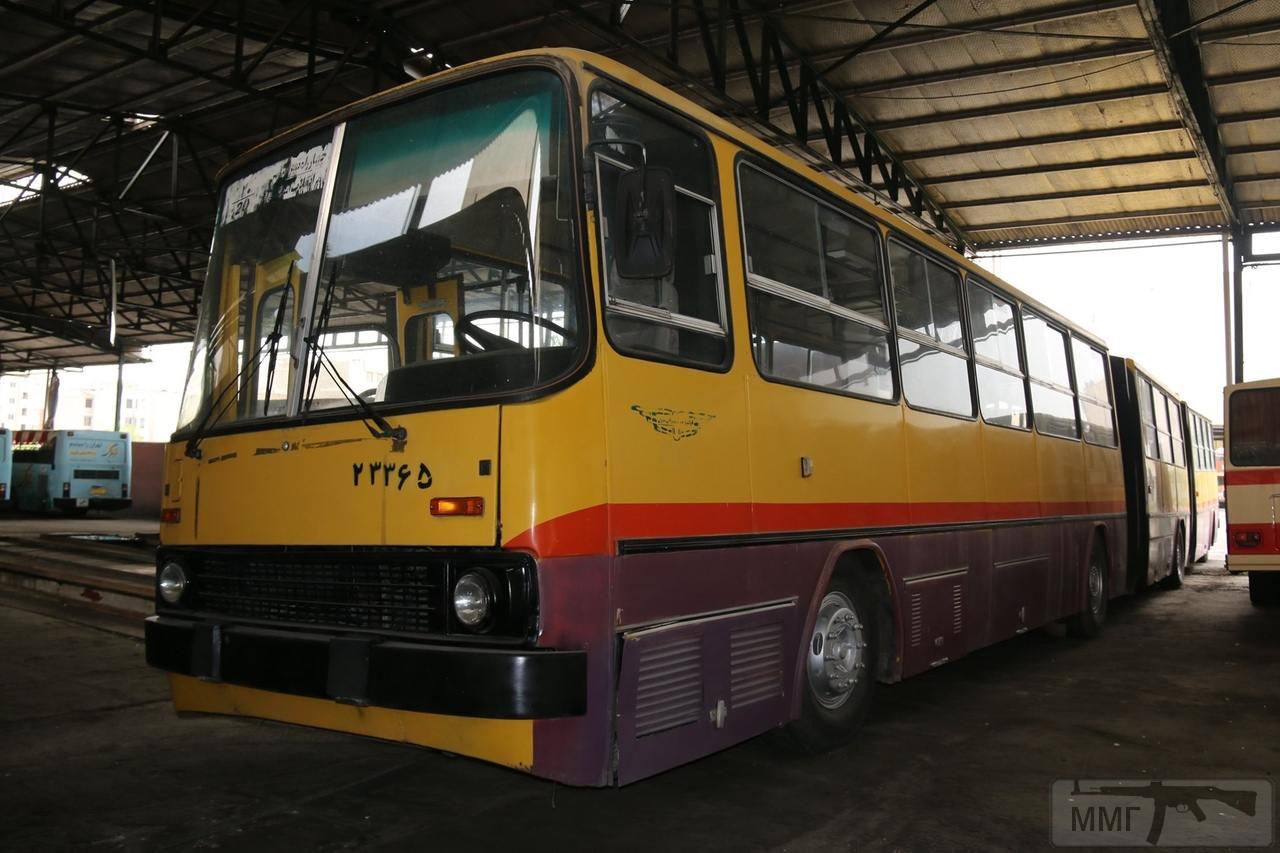 59599 - Икарусы