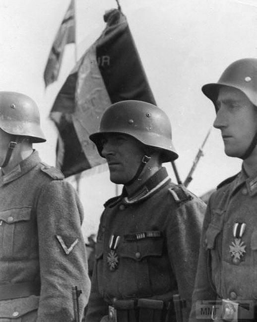 59704 - Союзники Германии на Восточном фронте