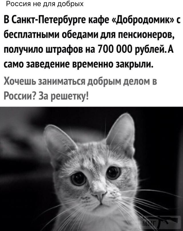 59726 - А в России чудеса!