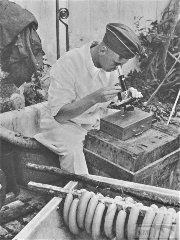 60086 - Военное фото 1941-1945 г.г. Восточный фронт.