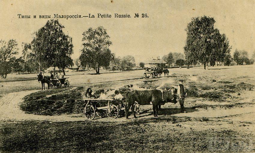 61521 - Мальовнича Україна.