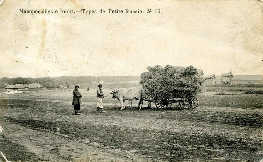 61522 - Мальовнича Україна.