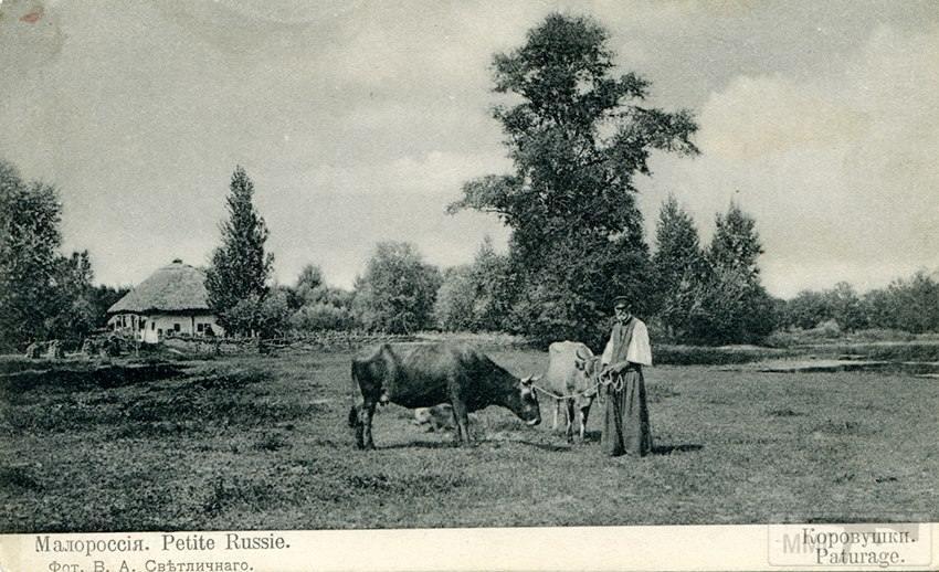 61631 - Мальовнича Україна.