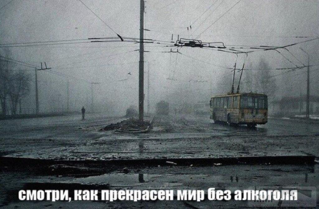 65494 - Пить или не пить? - пятничная алкогольная тема )))