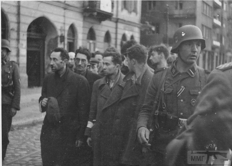 65693 - Военное фото 1941-1945 г.г. Восточный фронт.