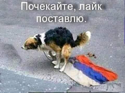 65931 - А в России чудеса!