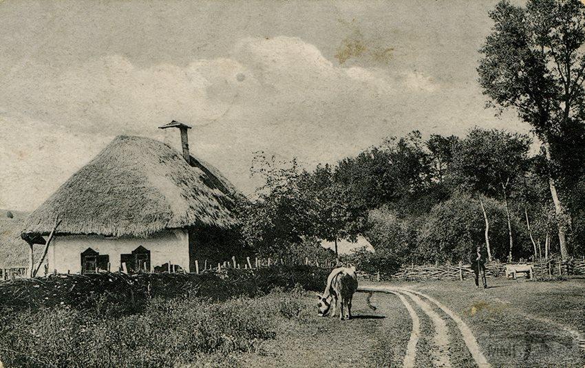 66991 - Мальовнича Україна.