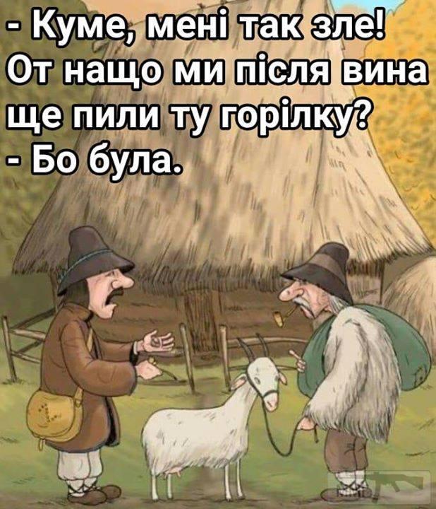 68238 - Пить или не пить? - пятничная алкогольная тема )))