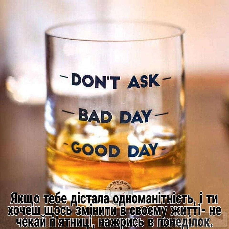 70646 - Пить или не пить? - пятничная алкогольная тема )))
