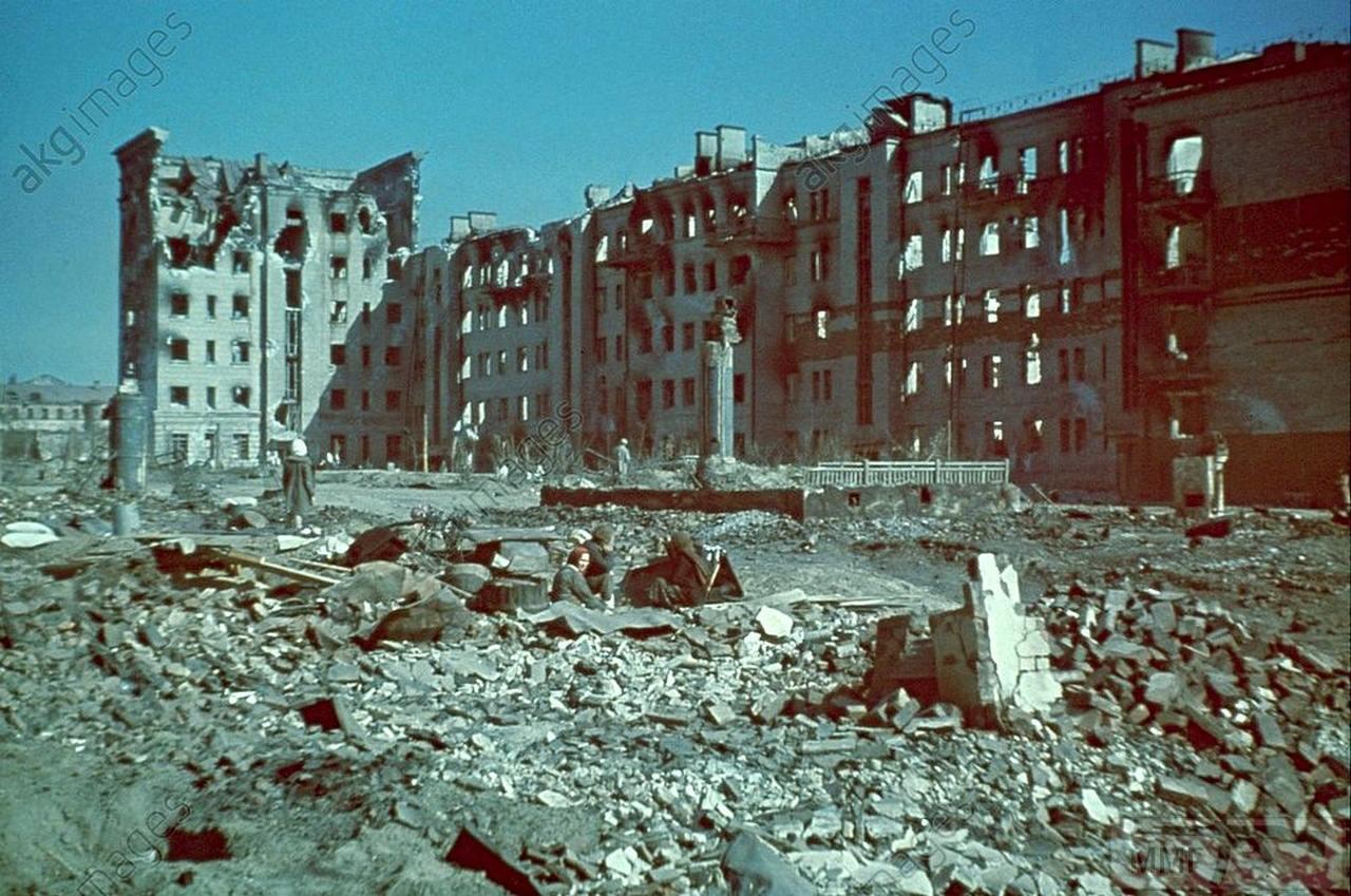 71248 - Военное фото 1941-1945 г.г. Восточный фронт.