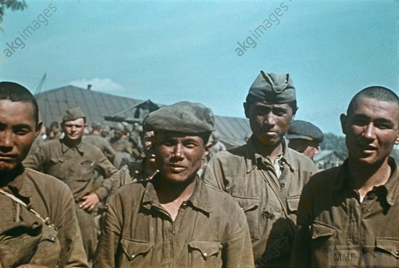 71252 - Лето 1941г,немецкие фото.