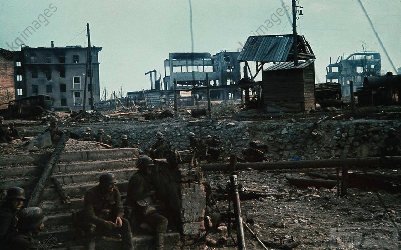 71260 - Военное фото 1941-1945 г.г. Восточный фронт.
