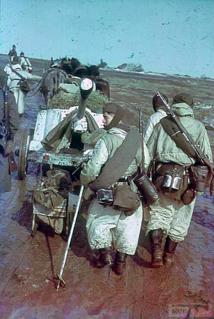 71270 - Военное фото 1941-1945 г.г. Восточный фронт.