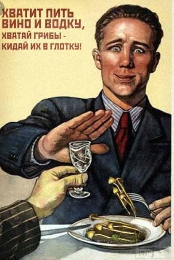 71625 - Пить или не пить? - пятничная алкогольная тема )))