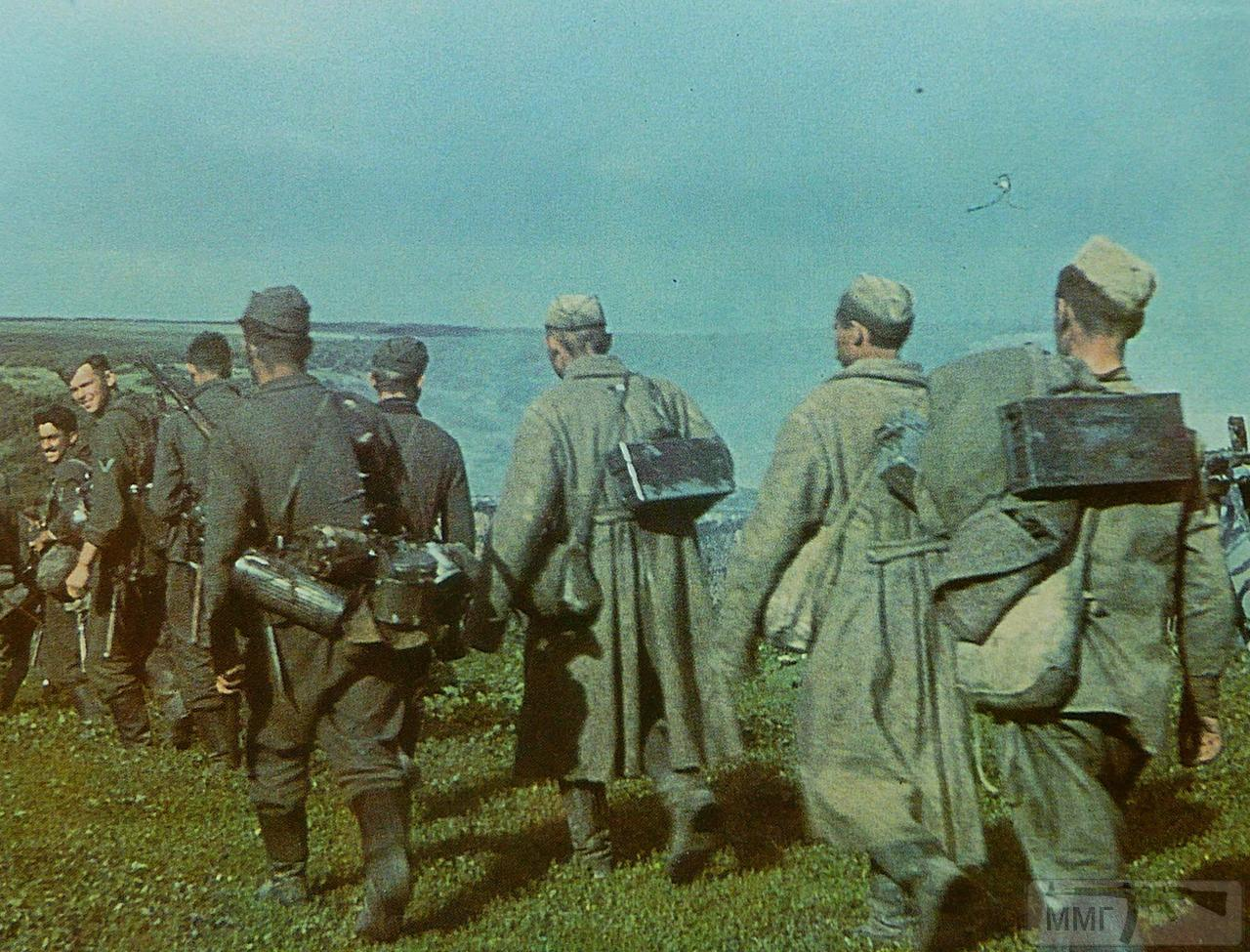 71659 - Военное фото 1941-1945 г.г. Восточный фронт.