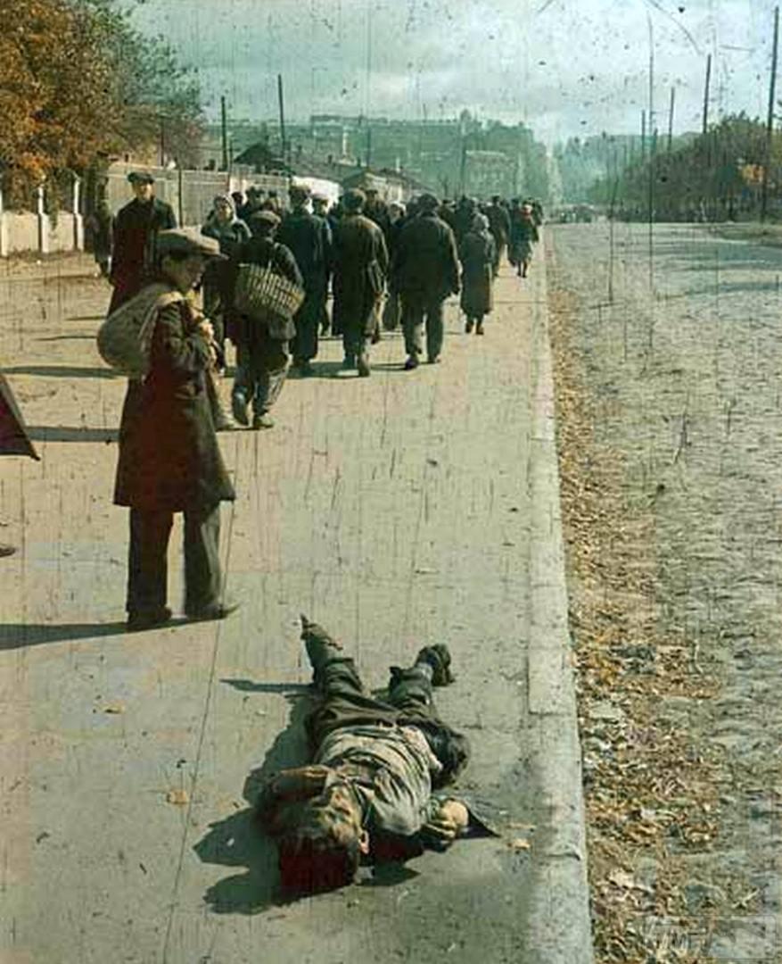 71663 - Оккупированная Украина в фотографиях