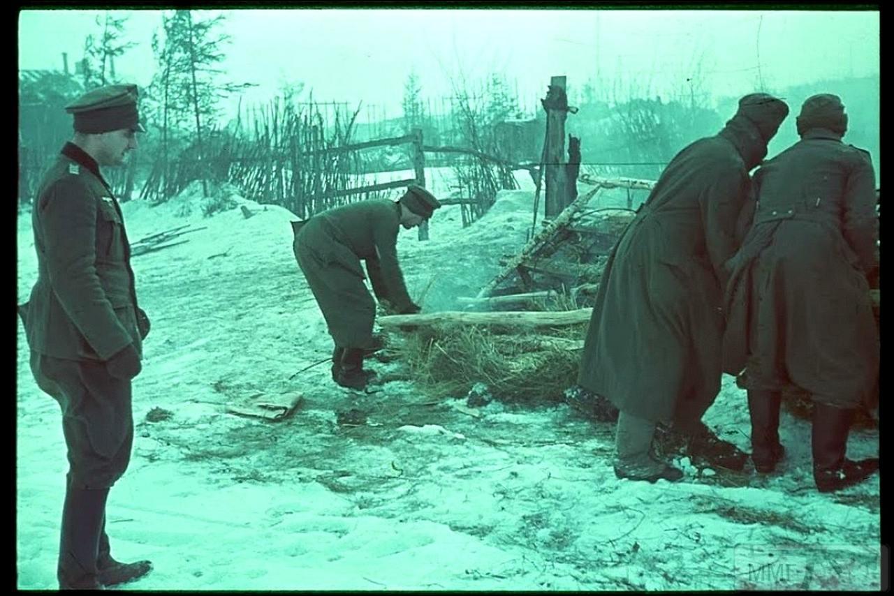 71995 - Военное фото 1941-1945 г.г. Восточный фронт.