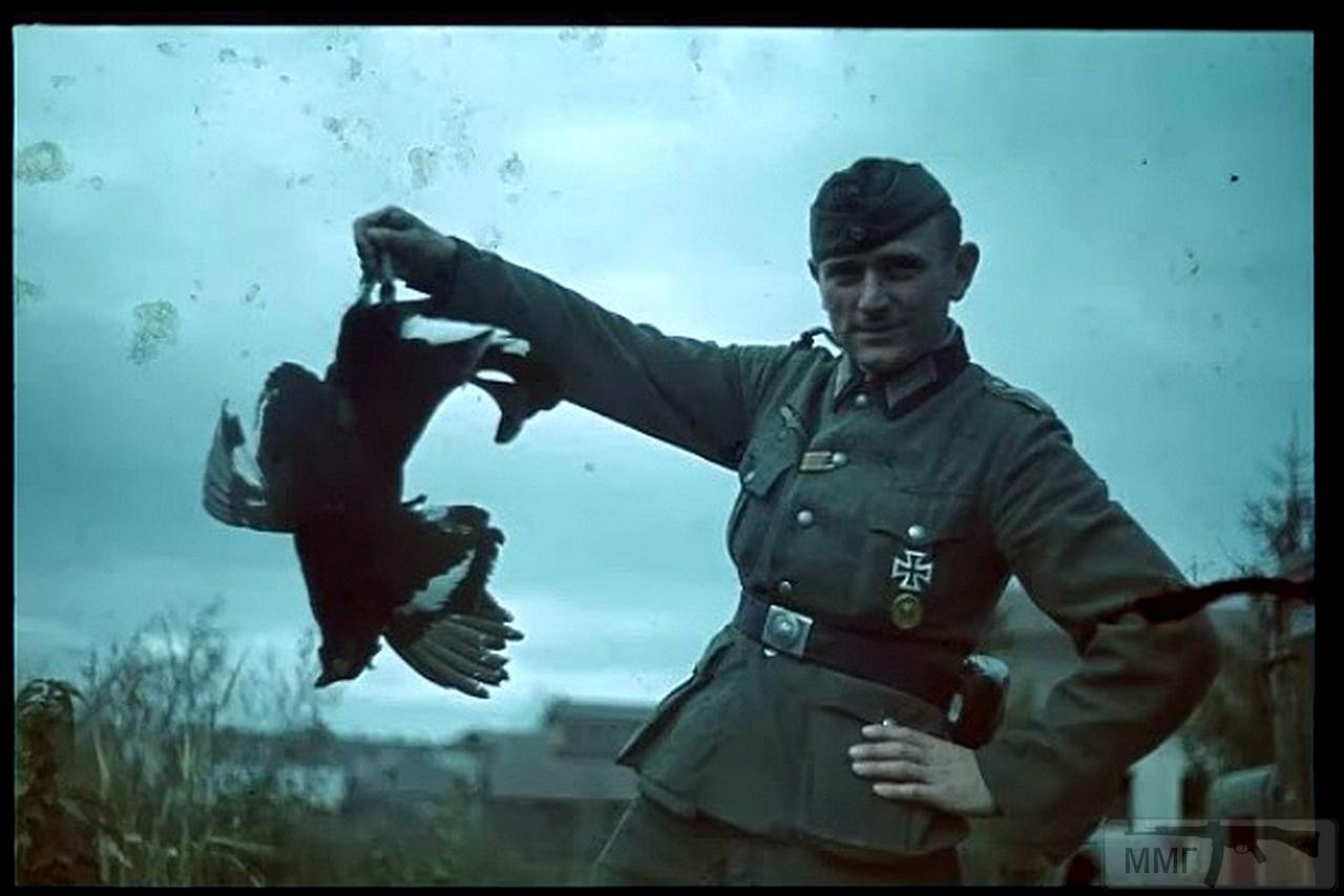72000 - Военное фото 1941-1945 г.г. Восточный фронт.