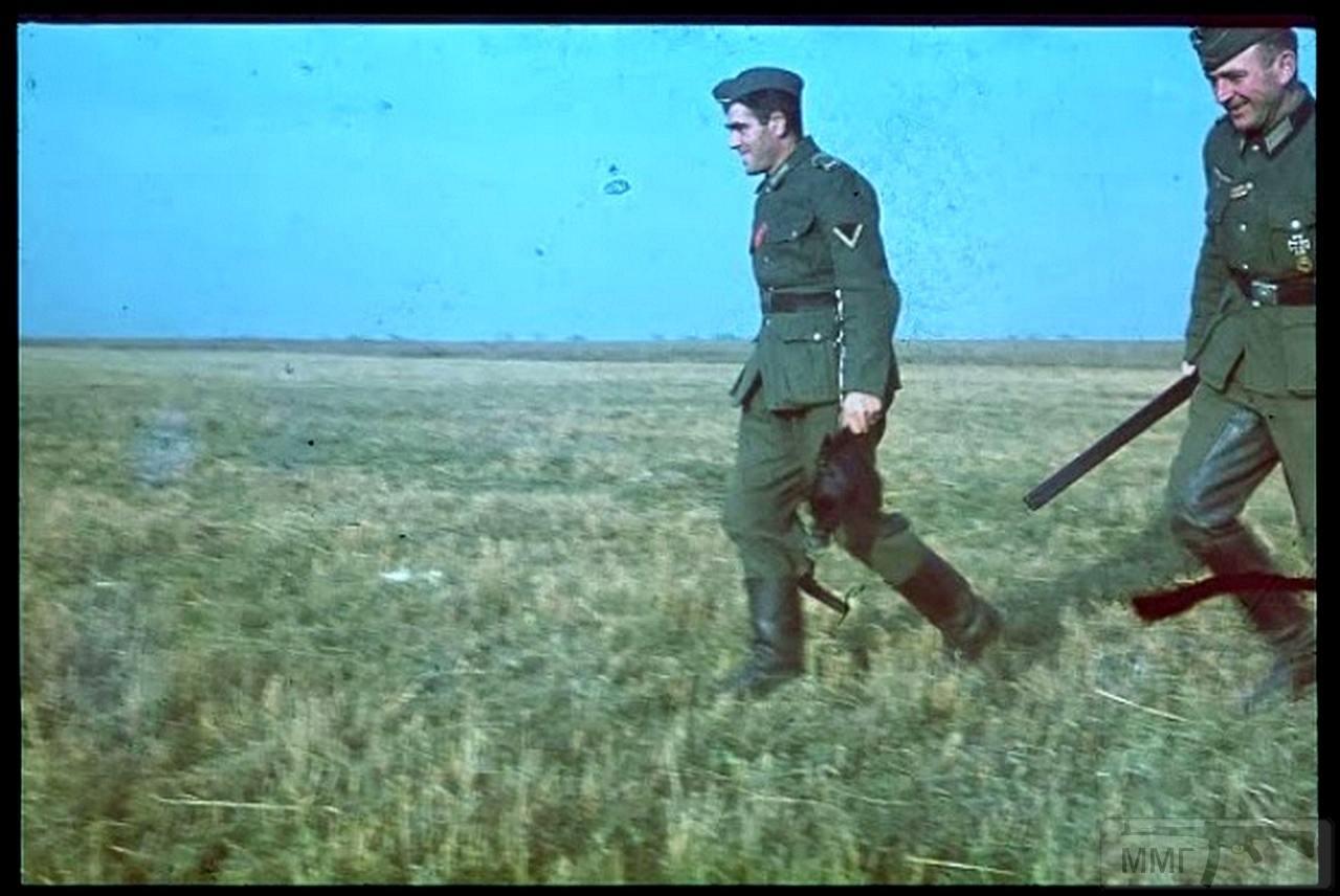 72001 - Военное фото 1941-1945 г.г. Восточный фронт.