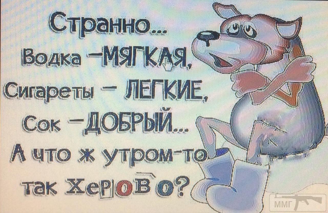 72716 - Пить или не пить? - пятничная алкогольная тема )))
