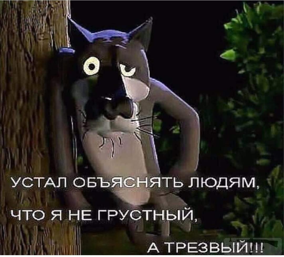 73194 - Пить или не пить? - пятничная алкогольная тема )))