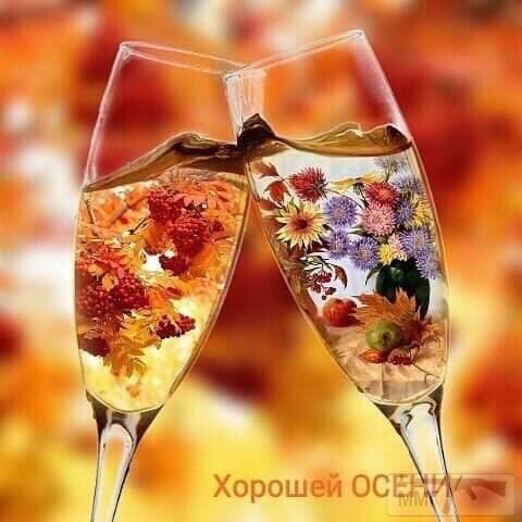 73398 - Пить или не пить? - пятничная алкогольная тема )))