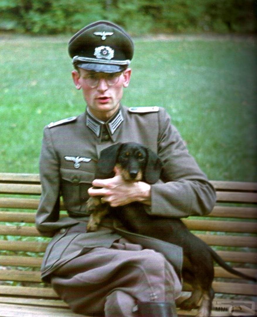 73677 - Военное фото 1941-1945 г.г. Восточный фронт.