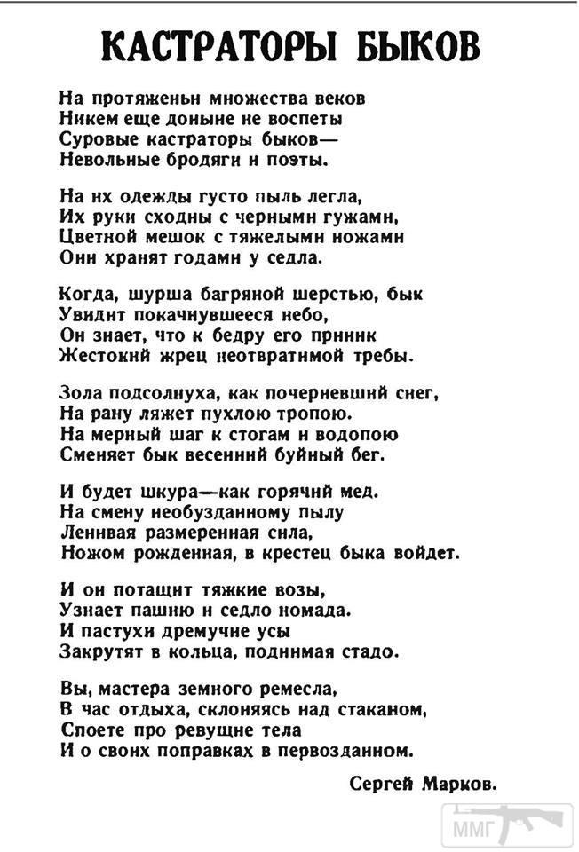 74263 - Поэзия