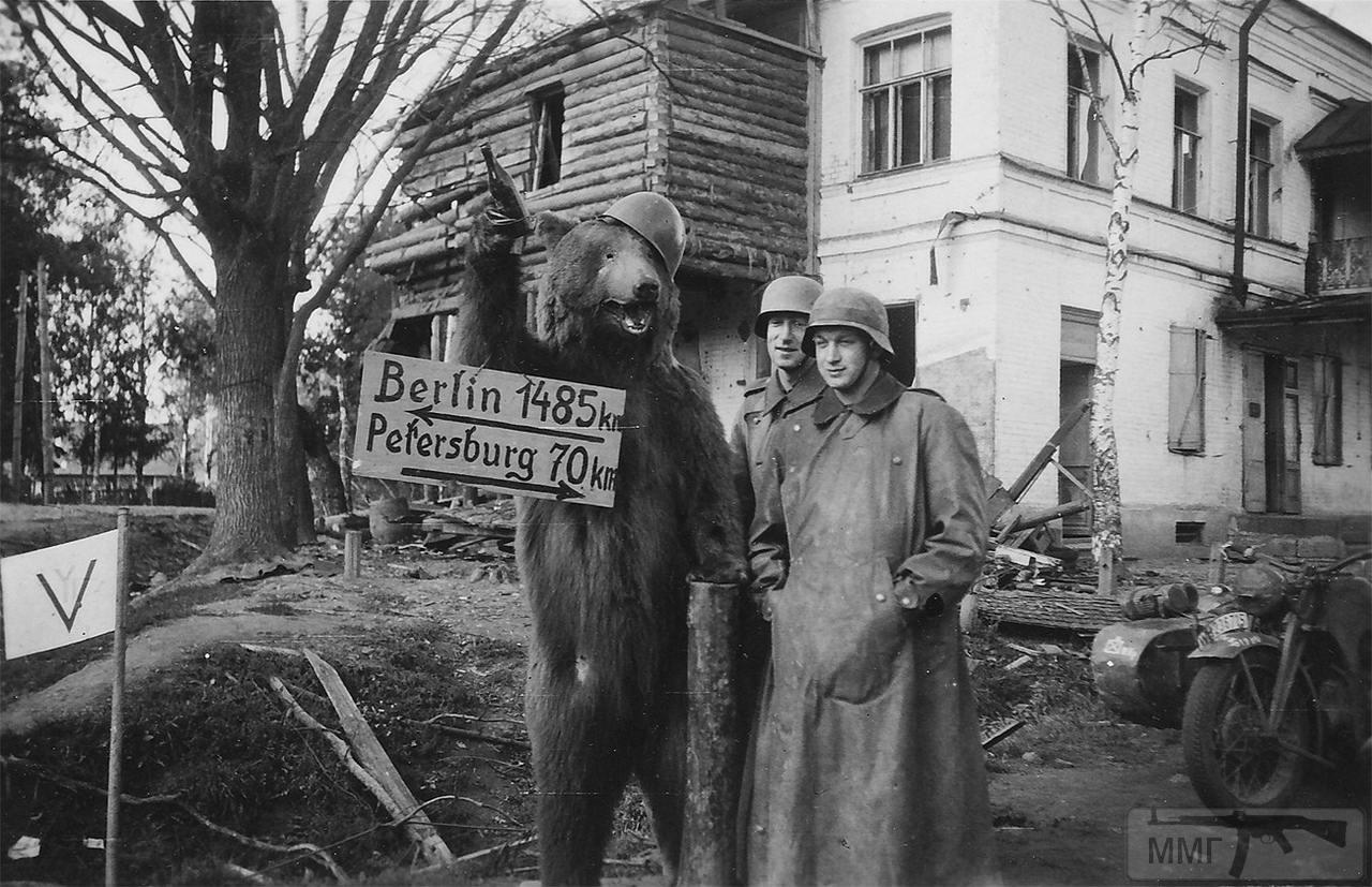 74881 - Военное фото 1941-1945 г.г. Восточный фронт.