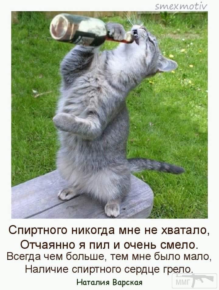 75464 - Пить или не пить? - пятничная алкогольная тема )))