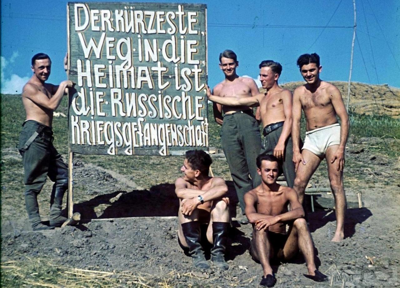 75942 - Военное фото 1941-1945 г.г. Восточный фронт.