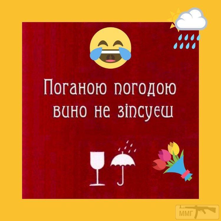 76495 - Пить или не пить? - пятничная алкогольная тема )))
