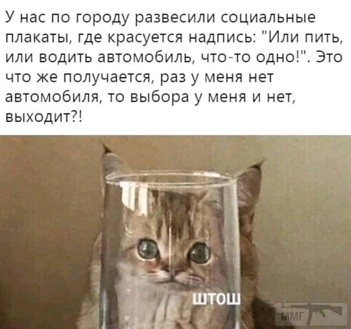76591 - Пить или не пить? - пятничная алкогольная тема )))