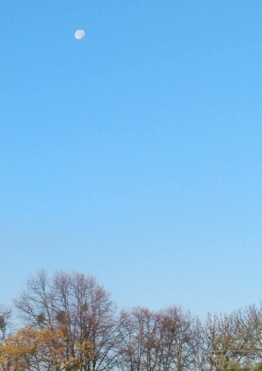 77456 - Копарські дні і будні.
