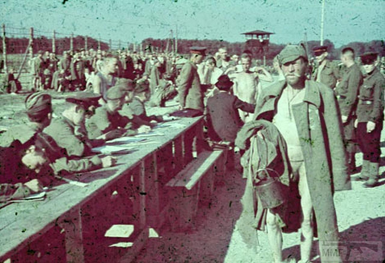 77501 - Военное фото 1941-1945 г.г. Восточный фронт.