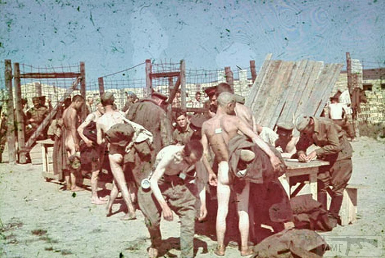 77503 - Военное фото 1941-1945 г.г. Восточный фронт.