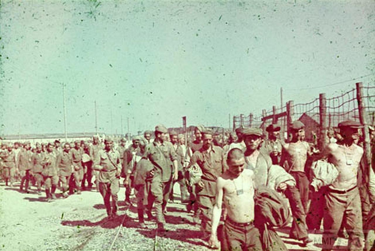 77506 - Военное фото 1941-1945 г.г. Восточный фронт.
