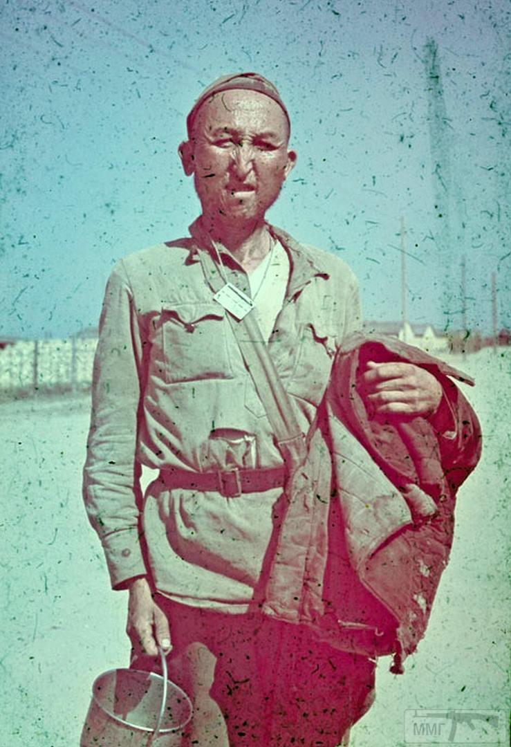 77509 - Военное фото 1941-1945 г.г. Восточный фронт.