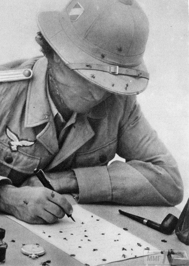 77546 - Военное фото 1939-1945 г.г. Западный фронт и Африка.
