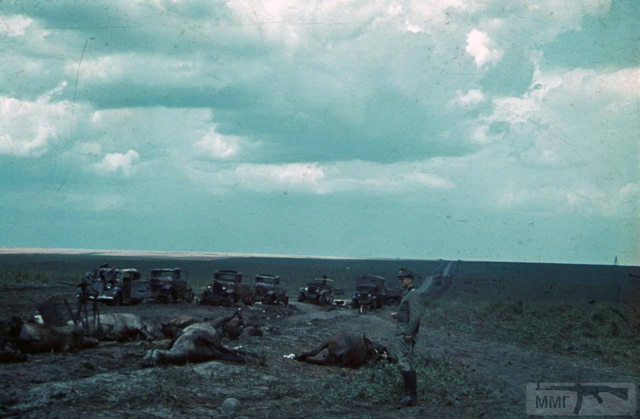78116 - Лето 1941г,немецкие фото.