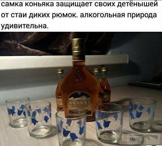 80712 - Пить или не пить? - пятничная алкогольная тема )))