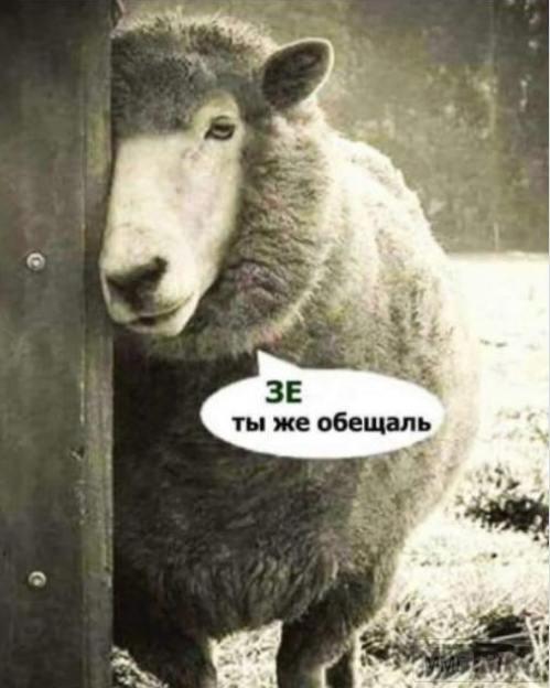 81048 - Украина - реалии!!!!!!!!
