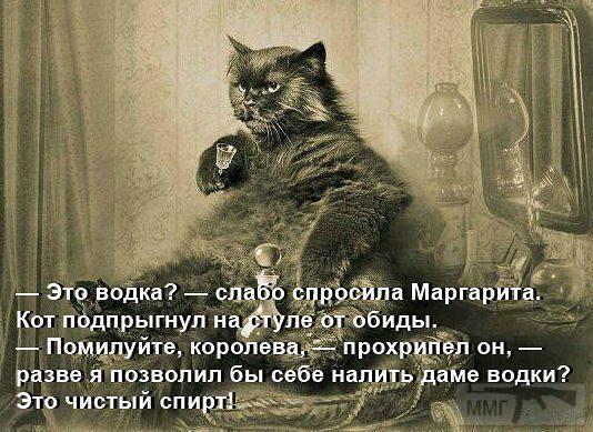 83499 - Пить или не пить? - пятничная алкогольная тема )))