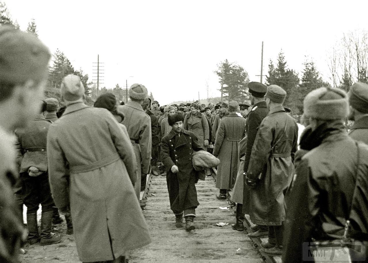 83536 - Зимняя война (1939-1940)