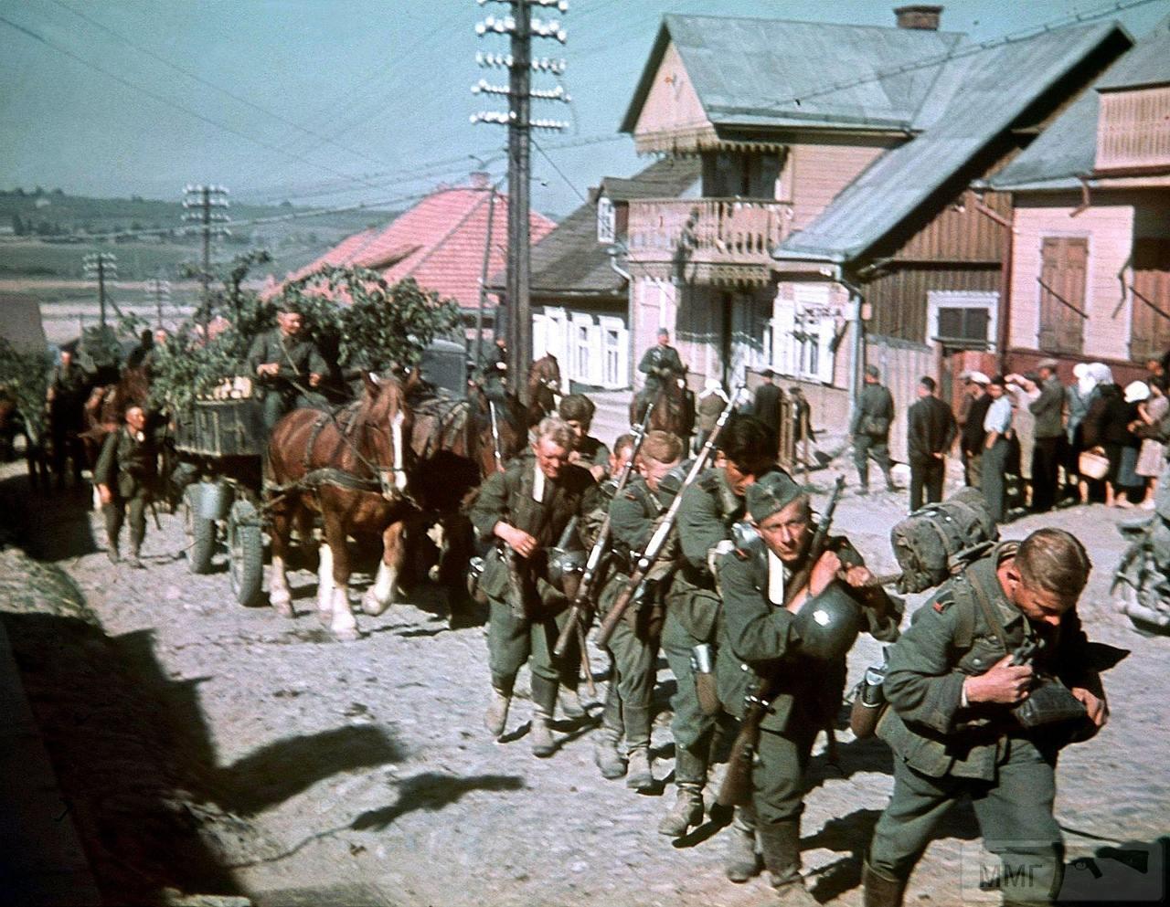 83544 - Военное фото 1941-1945 г.г. Восточный фронт.